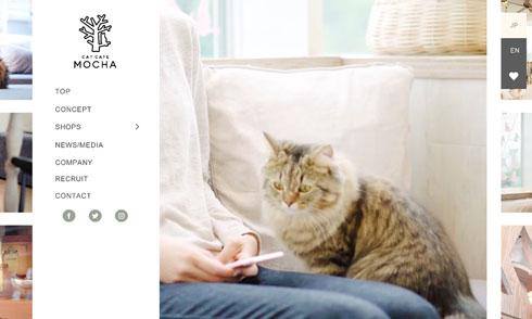 猫パルボ 猫カフェ