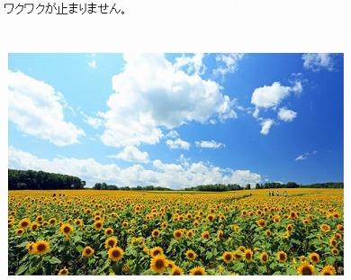 小林麻耶 引退 結婚 芸能界 年齢 理由 ブログ