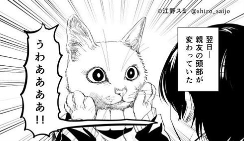 友達と異世界に迷い込んだ 猫化 漫画 SF 江野スミ 亜獣譚