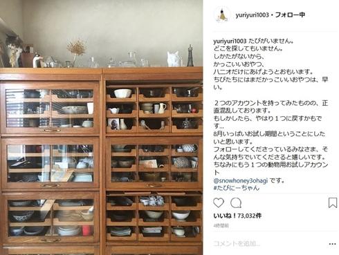 石田ゆり子 ハニオ タビ みっつ はっち 猫 雪