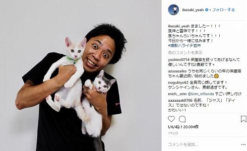 サンシャイン池崎 保護猫 猫スタグラム 風神 雷神 猫の森