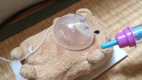 子ども クマ 緊急手術 ごっこ 腫瘍 摘出 再現 発想