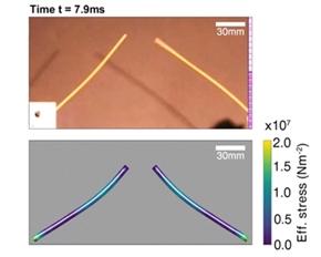 MIT、スパゲティを半分に折る方法を発見 3つ以上に折れる理由の判明から13年を経て