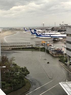 関西国際空港 台風21号 孤立 当事者 インタビュー 対応