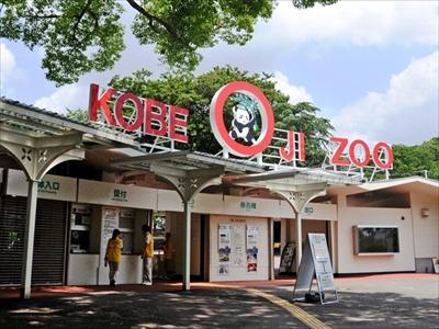 王子動物園タンタン
