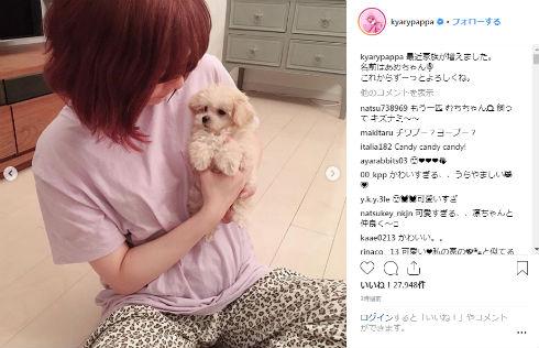 きゃりーぱみゅぱみゅ 犬 ペット あめちゃん 家族 Instagram