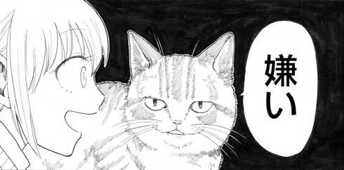 猫 お姉ちゃん 漫画 嫌い しゃべる 猫好き