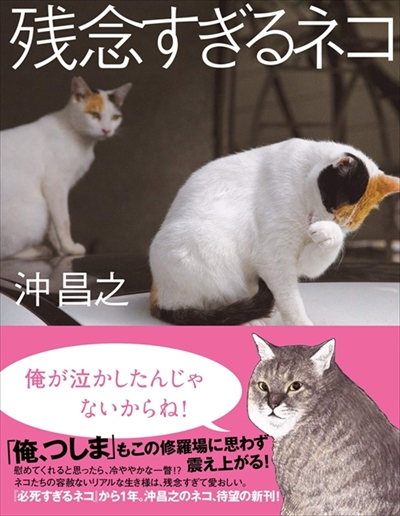 残念すぎるネコ サイン会&写真展