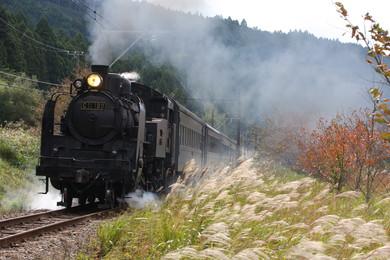 SL列車や日本唯一のアプト式鉄道にも乗れます