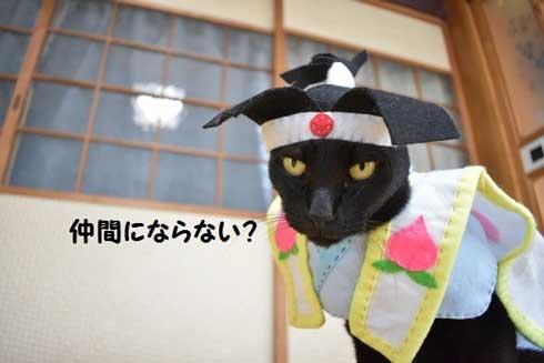 カープ 応援 コスプレ 黒 猫 チョコラ