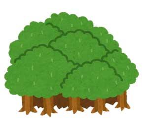 緑はもう無いかもしれない 学校 課題 環境啓発ポスター ペン インク デザイン