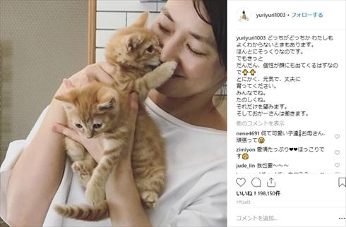 石田ゆり子 インスタ Instagram 50歳 ペット はっち みっつ はちみつ ハニオ たび