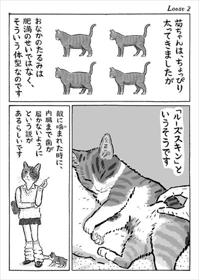 お腹 たるみ 猫