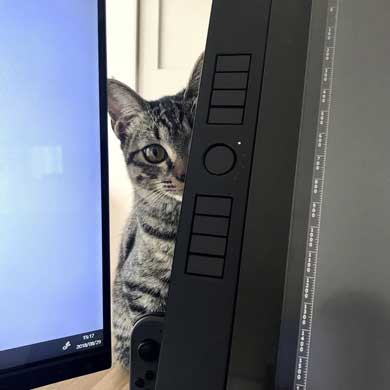 理想と違った 猫のいる仕事場 現実 椅子 あるある