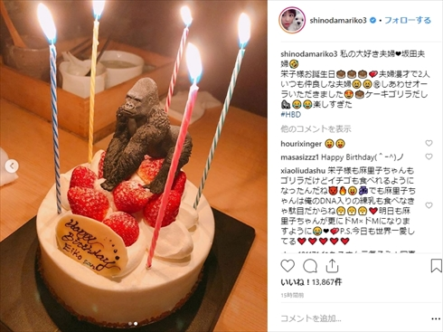 小池栄子 坂田亘 篠田麻里子 夫婦 誕生日 年齢 現在 ゴリラ