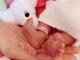 土屋アンナ、第4子女児を出産 「家族がまた一人増え、ますます賑やかな家庭に」