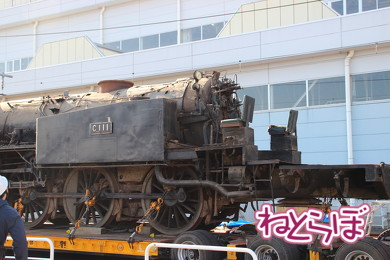東武 SL大樹 C11型蒸気機関車 C11-1