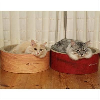 ベッドと同化する猫ちゃん