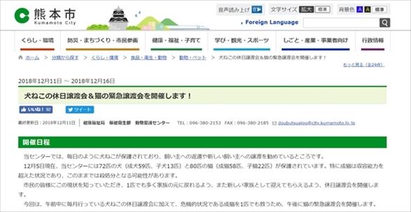 熊本市緊急譲渡会