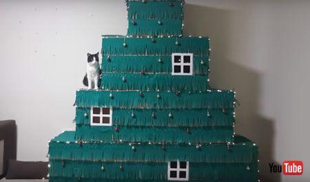 クリスマスツリーと猫ちゃん