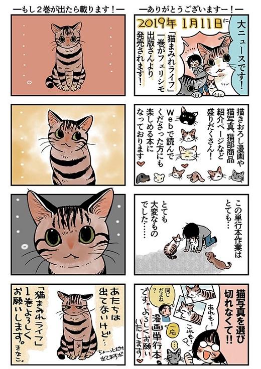 猫まみれライフ