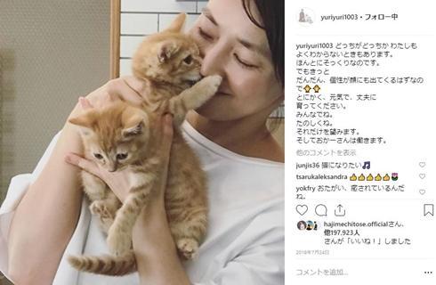 石田ゆり子 犬猫アカウント タビ ハニオ Instagram