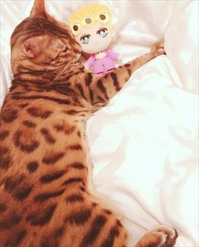 叶姉妹 ジョジョの奇妙な冒険 ファビュラスくん 猫ベンガルキャット
