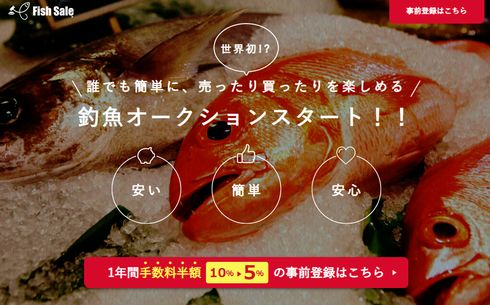 Fish Sale オークション 魚 厚生労働省 食品衛生法