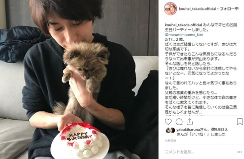武田航平 きび ころ ポメラニアン 愛犬 誕生日