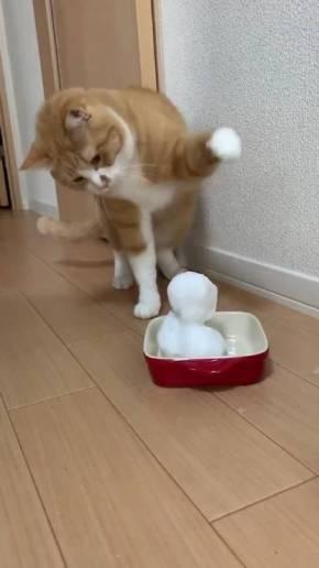 ネコvs雪だるま さんて