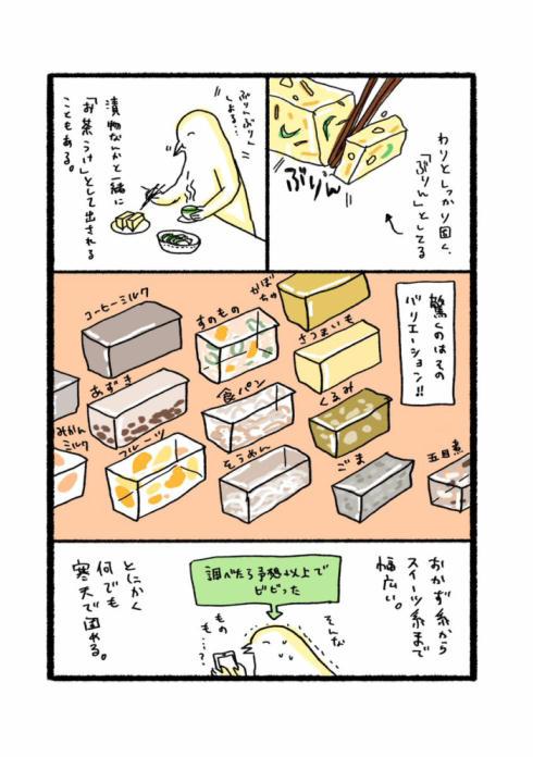 寒天で固めるナゾ文化02
