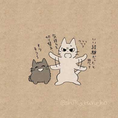 しかるねこ あまやかすねこ 続編 書籍 Twitter 漫画 叱る 褒める 励ます 猫
