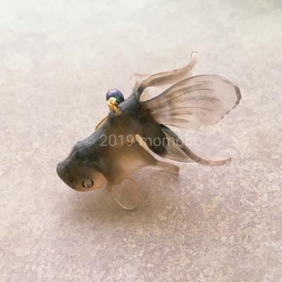 宝石金魚 灰色
