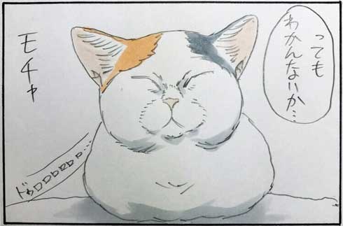 猫 あるある 幸せ 表情 4コマ漫画 拾い猫のモチャ 単行本 2巻 海外進出 にごたろ