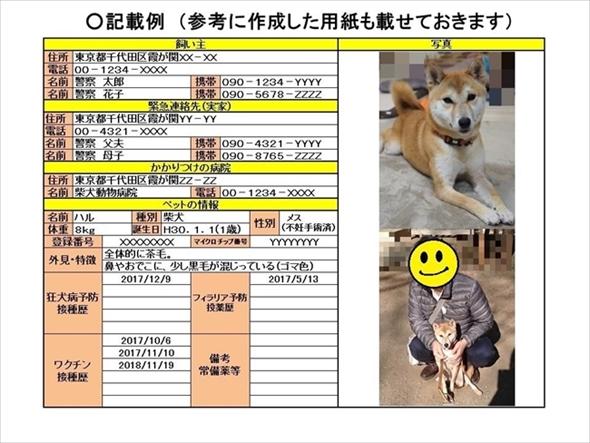 ペットのプロフィールカード