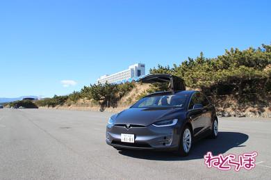 日本の電気自動車