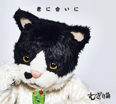 むぎ(猫) メジャー デビュー