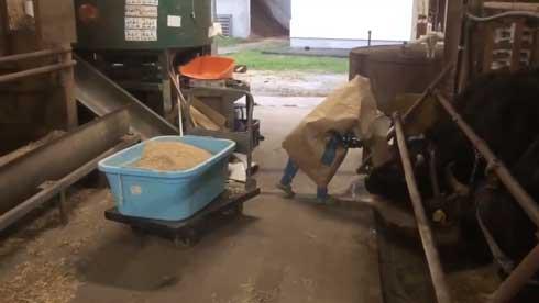 紙袋 餌袋 マン かぶる 子ども エサ袋 雷 反応 頭隠す かわいい 牛