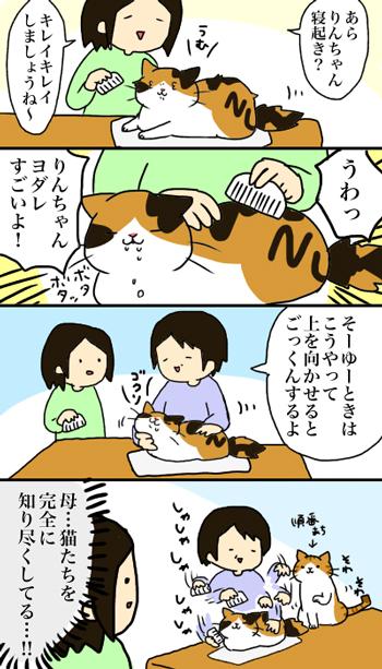 りんちゃん漫画