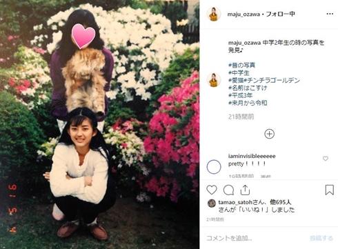 小沢真珠 14歳 中学生 翔んで埼玉 最近 牡丹と薔薇