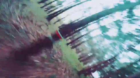 時速100キロ 森の中 ドローン 映像 スターフォーズ