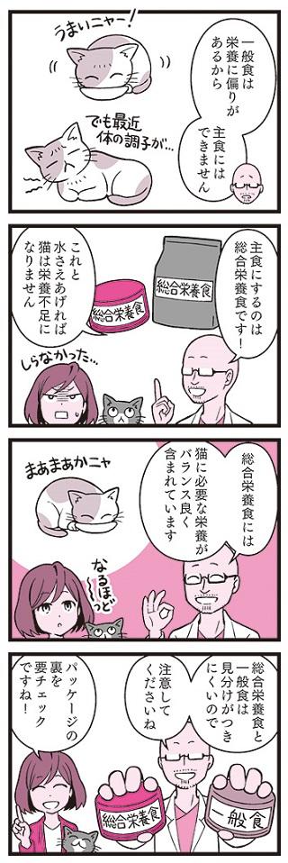 猫の寿命はごはんで決まる