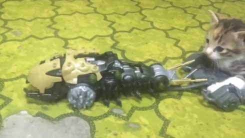 ゾイド キャタルガ 子猫 乗せる トルク タカラトミー