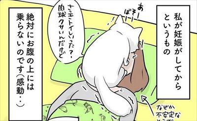 クマゴマさんの漫画