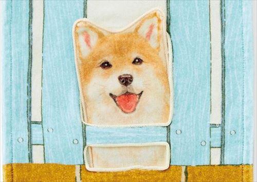 すき間からのぞく柴犬タオル