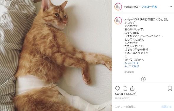 ワード石田ゆり子 石田ひかり 誕生日 Instagram