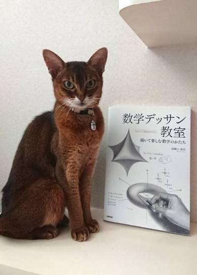 読書のじゃま 猫