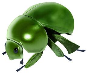 広がった緑のマンマルコガネ