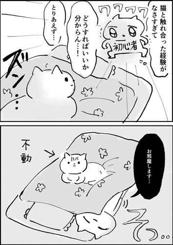 初めて猫とネタ漫画2ページ目