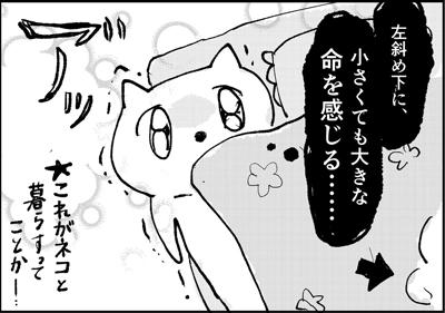 初めて猫とネタ漫画3ページ目